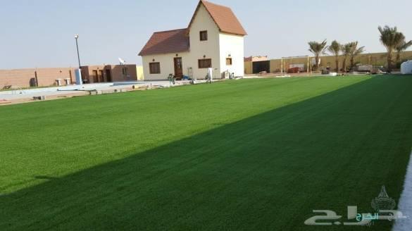 عشب صناعي مسطحات خضراء ملاعب حدائق مدارس