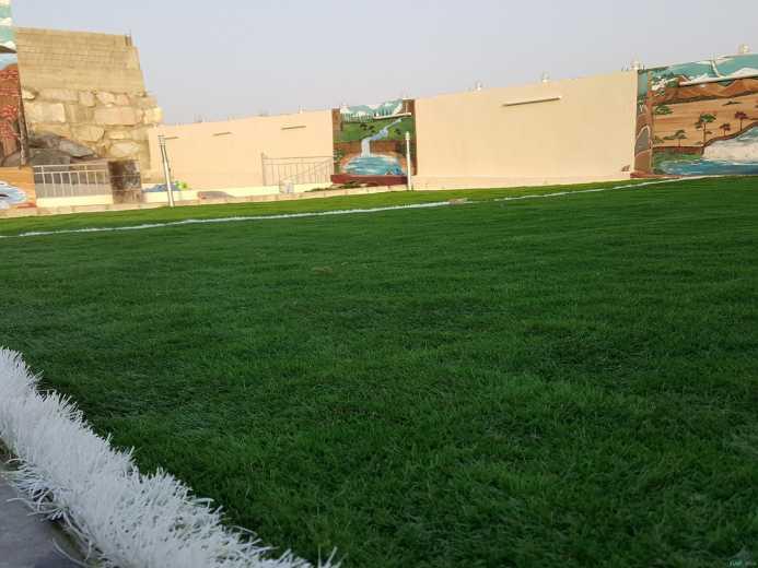عشب صناعي جدة