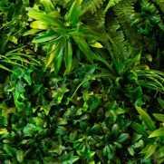 العشب الصناعي الأصلي 0530445119